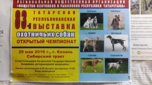83.  казанская выставка