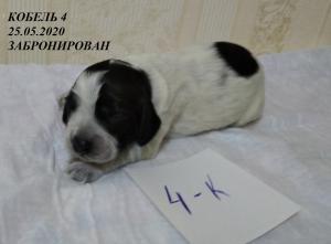 щ.Ай. К-4
